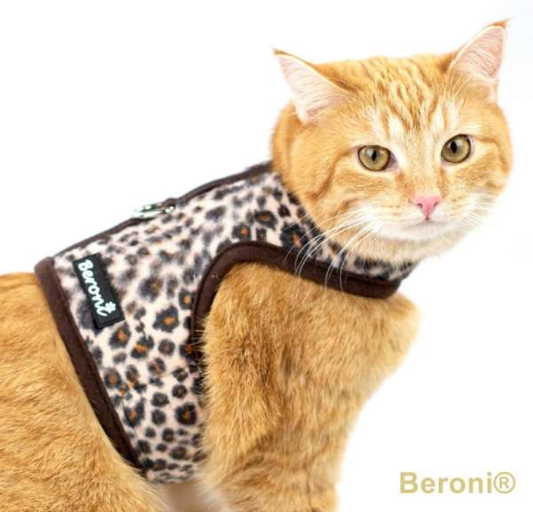 Cat Walking Jacket Katzengeschirr Leopard